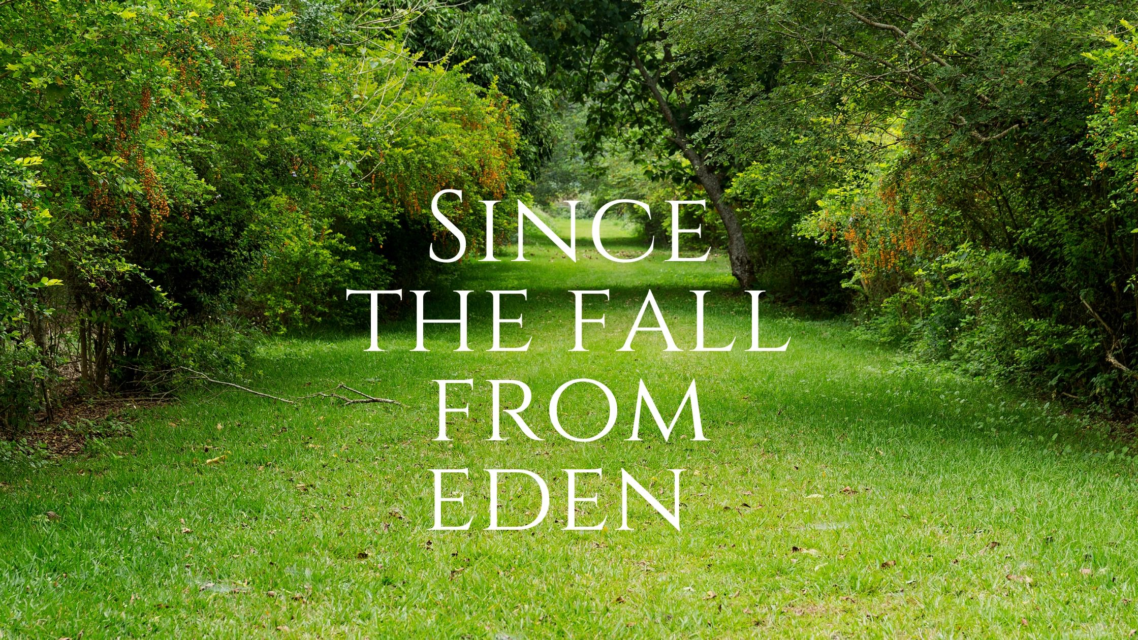 since the fall from eden
